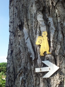 Country style trail marker!