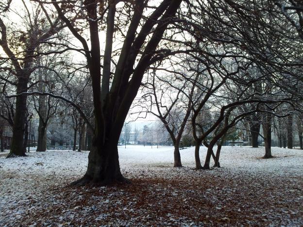 Snow in Giardini Reali, Turin