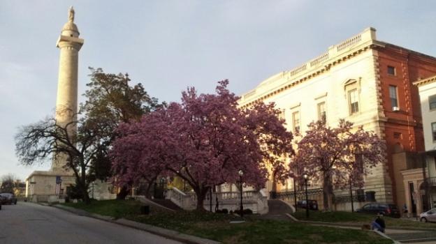Spring in Baltimore