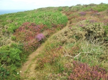 South West Coast Path, Cornwall