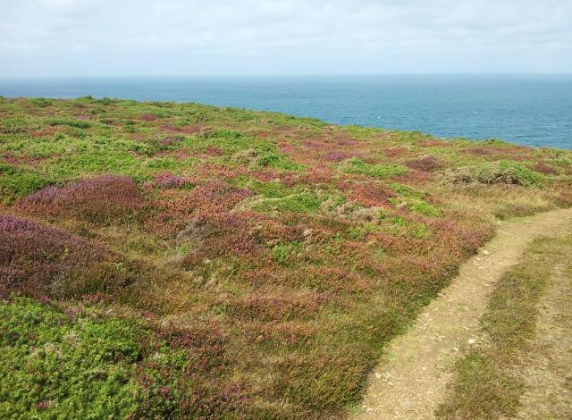 South West Coast Path, Cornwall
