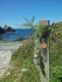 Decorated South West Coast Path trail marker