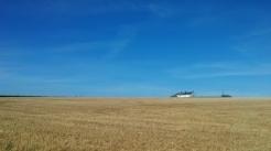 Farmland in Cornwall
