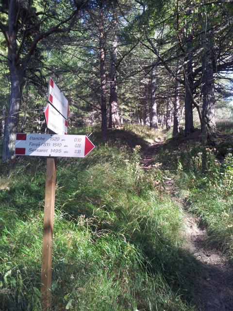 Trail markers in Gran Bosco di Salbertrand