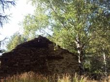 Old building in Gran Bosco di Salbertrand