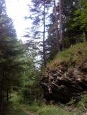 Gran Bosco di Salbertrand