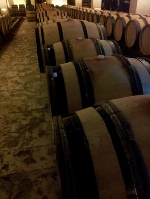 Wine cellar in Dijon